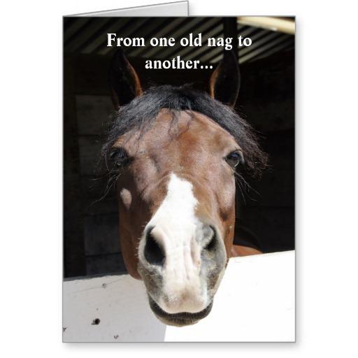 Barn Horse Old Nag Happy Birthday Card Text