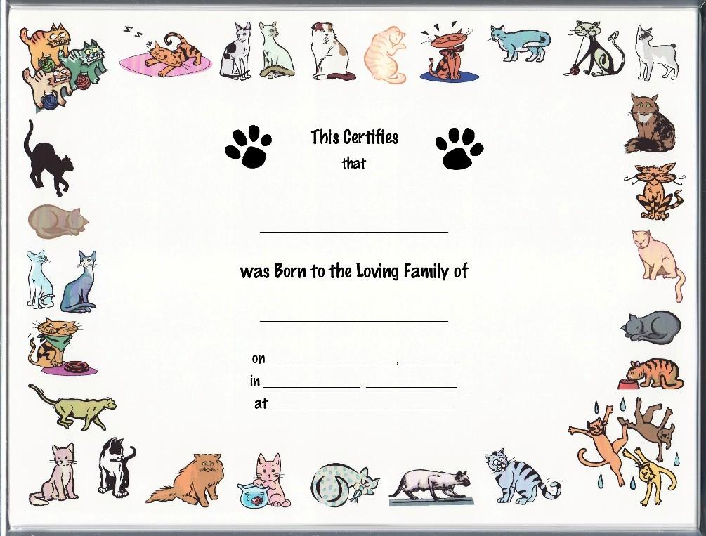 2. Full scale image shown of: Certificate of newborn Cat ...