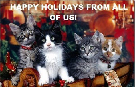Cats Happy Holidays from all of us