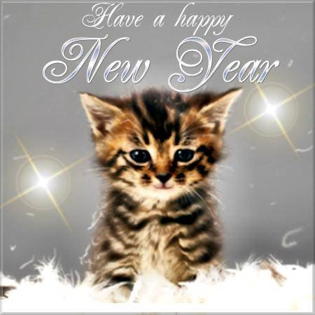 Kitten   Have a Happy New Year
