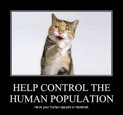 Cat says Help control human population