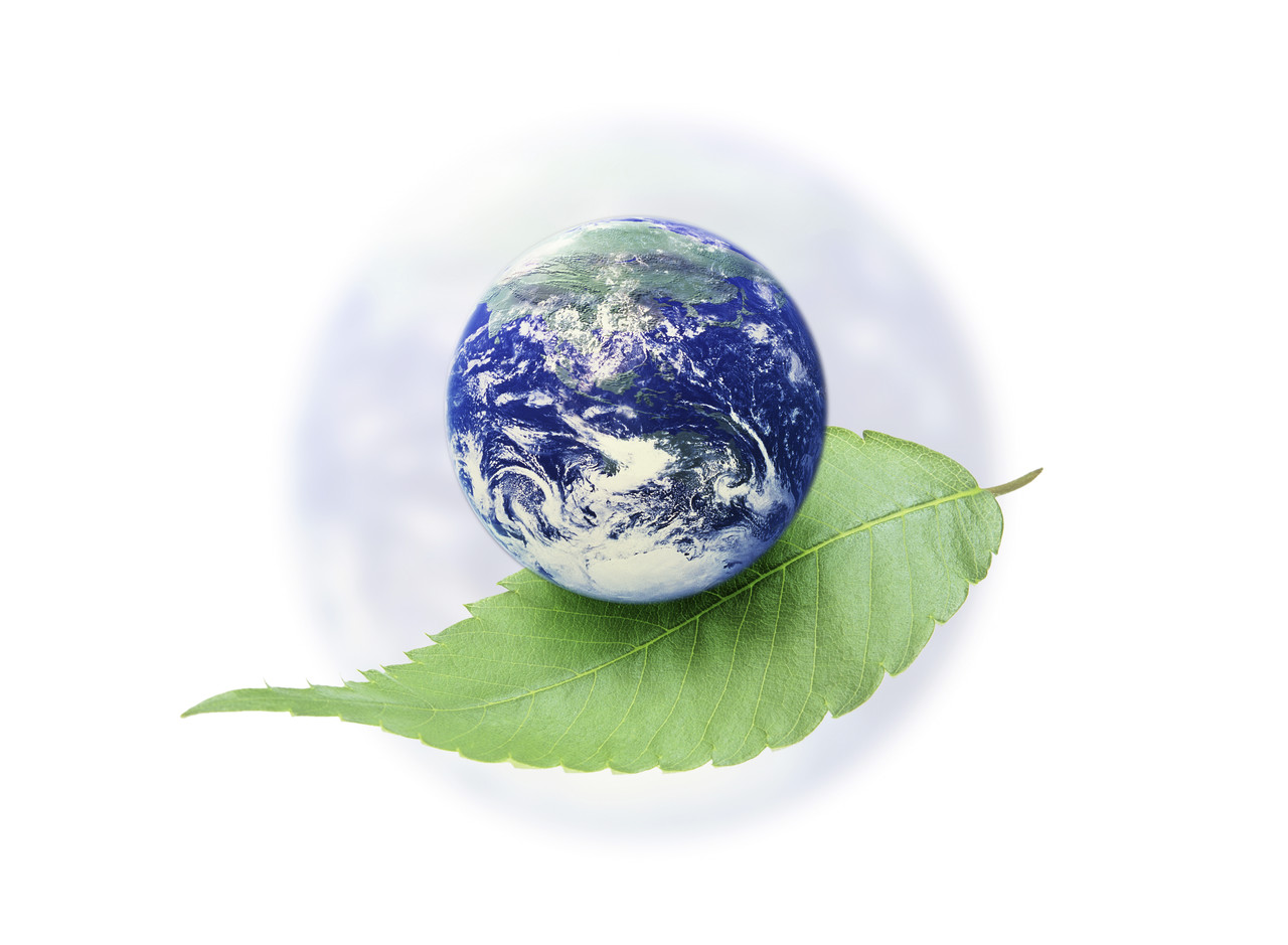care environment globe on leaf
