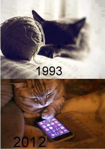 the influence of high tech on cats